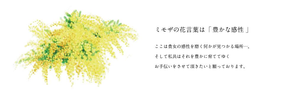 ミモザの花言葉は「豊かな感性」